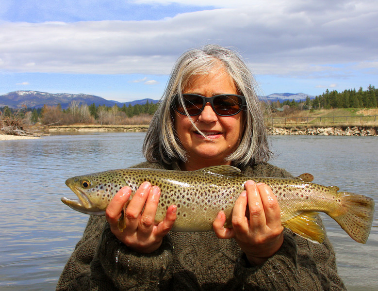 Merle's big brown trout