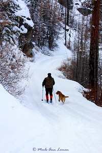 Jack and Freda skiing on the road that goes to Bear Creek Overlook, January 25, 2010