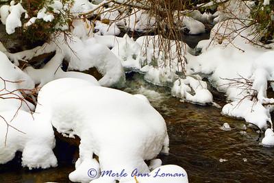 Gash Creek in December