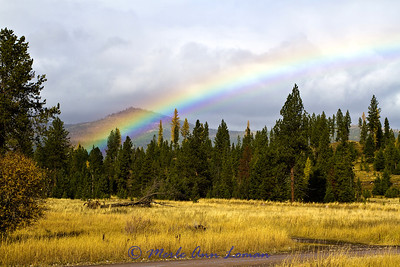 Rainbow from Gold Creek Road.