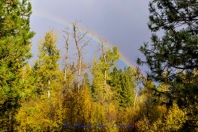 Rainbow over Bear Creek west of Victor IMG_9321 ¯\_(ツ)_/¯ Please share and like the A Montana View Facebook page! Thanks so much for viewing. | visit www.amontanaview.com | #Photography #Montana #MontanaMoment #BaldEagle- Buy this photo at this link http://smu.gs/1k8p4U2