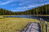 20150607-3R9B0473-Mud-Lake-2