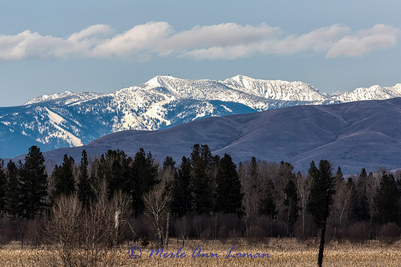 "Snowbowl Ski Area in February - taken from the Bitterroot Valley. Img_5723,<br /> <a href=""https://www.facebook.com/pages/Montana-Snowbowl/179057055446609"">https://www.facebook.com/pages/Montana-Snowbowl/179057055446609</a><br /> Snow report that day, 39 inches of snow and 35 degrees at the base, 74 inches and 29 degrees at the summit, wind 5 mph. 100% open."