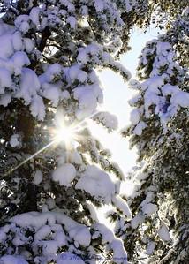 _MG_8027-neat-Chief-Joseph-snow-star-5x7
