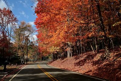 Radtke Road in Randolph, NJ