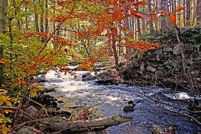 Black River in Morris County