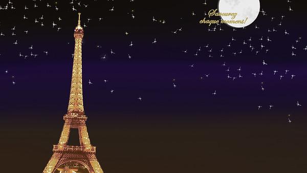 a Night Under the Stars in Paris - Taft DHH 2018