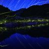 ゲンジボタル, 高知県宿毛 (Firefly2017-02)