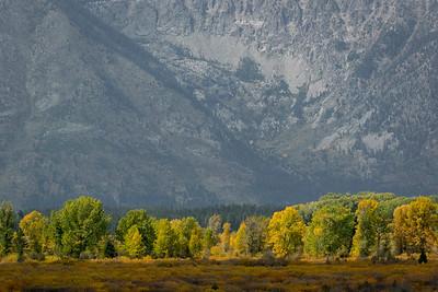 Grand Teton National Park: 2014