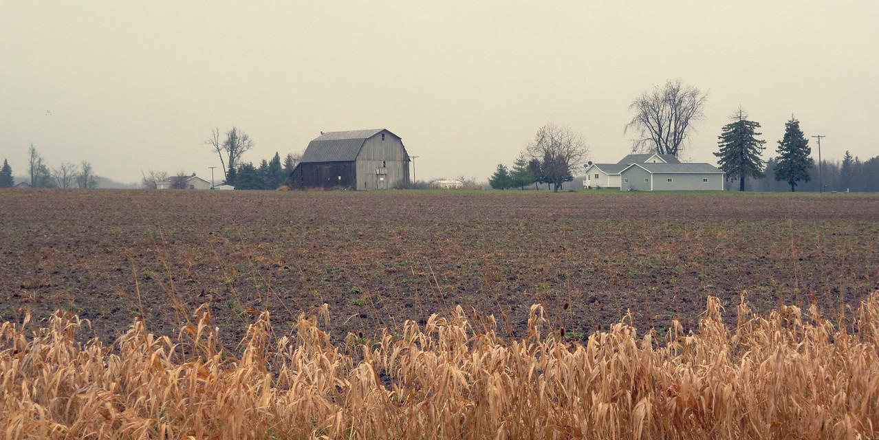 Farm, Dow at Mt Hope001