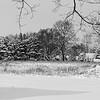 Mulliken in the Snow