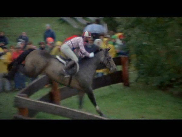 Cow's Cameo in the movie, International Velvet Filmed at the Ledyard International Championship 3-day Event 1977