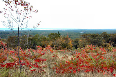 Looking East to the Atlantic Ocean Cape Neddick just behind the right branch of the tree,  and Cape Ann off in the distance on the right.