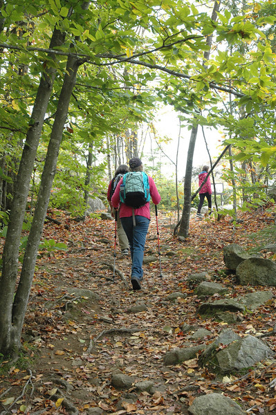 On the Witch Hazel trail leading to the summit, the going gets a little steeper and more rugged, but not bad at all.