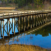 Uncle Tim\'s Bridge - Wellfleet