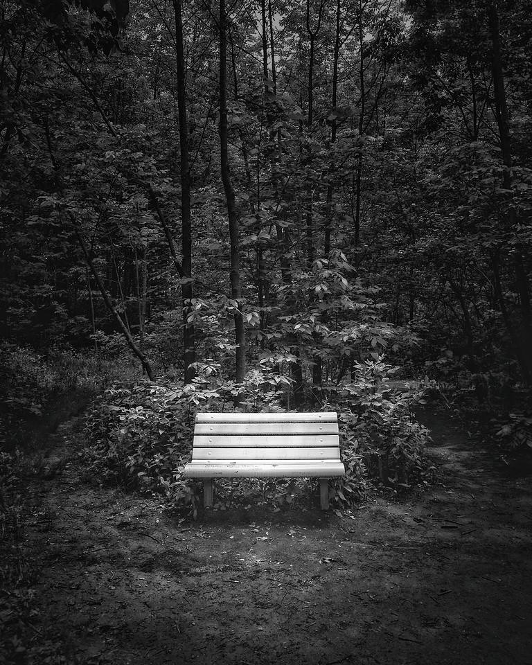 A Place to Sit