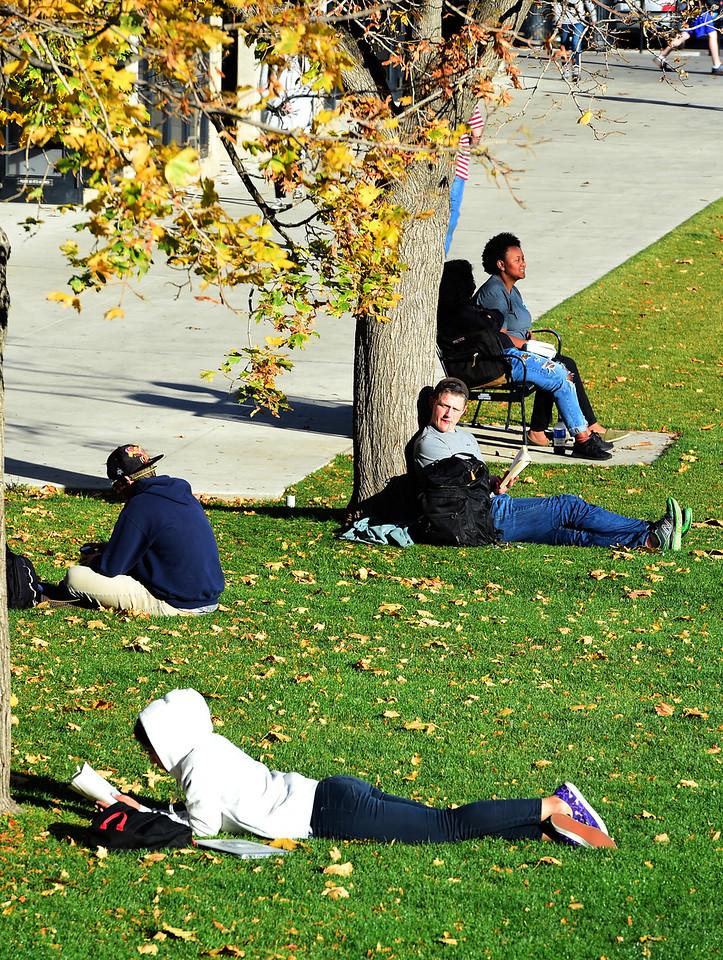 Slice of CU Campus Life