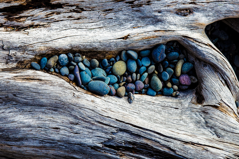 Driftwood Pearls