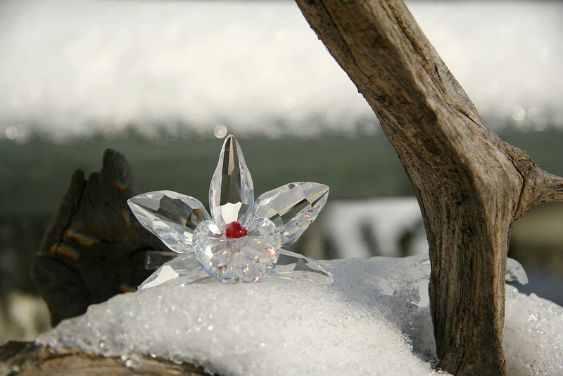 Crystal and Ice-III
