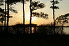 Sunset - Blackwater NWR - II