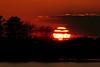 Sunset - Blackwater NWR - I