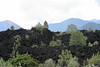 The Paricutin Volcano Lava Fields (1943-1952) - I
