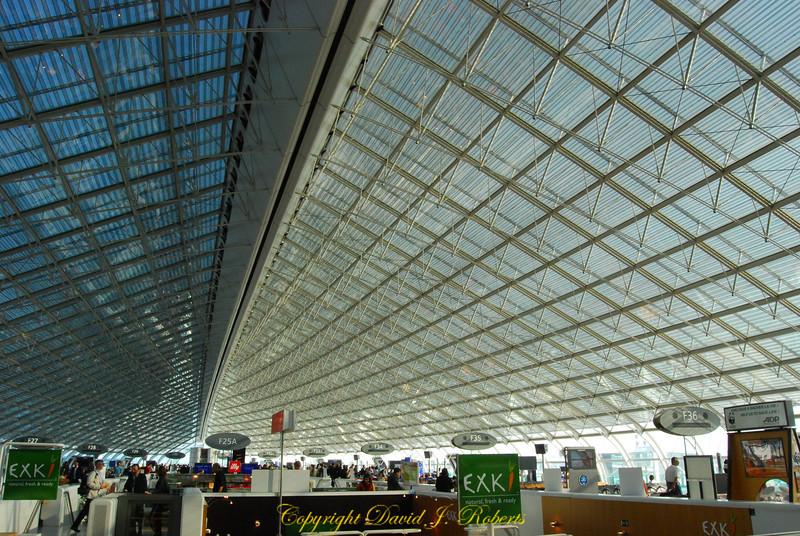 Charles D'Gaul Airport, Paris
