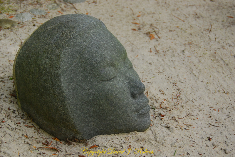 Stone face, Big Rock Sculpture Garden, Bellingham