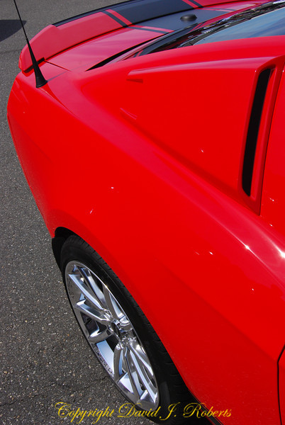 Red Saleen Cobra Ford Mustangs at the Mustang Show in Bellingham WA, August 2010