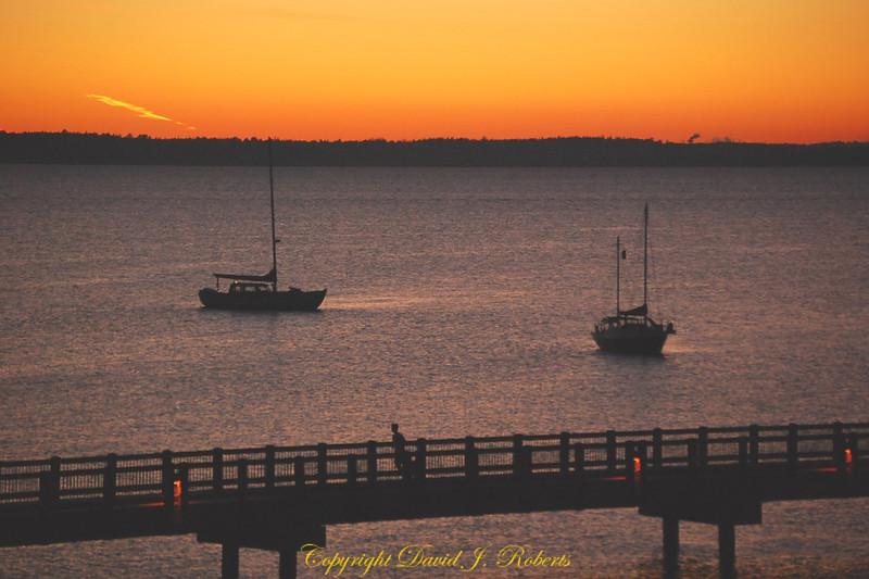 Sailboats in the sunset near Taylor dock walkway in Bellingham WA