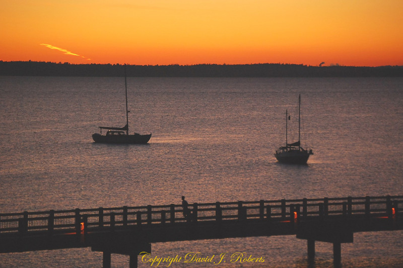 Sailboats in the sunset near Taylor dock walkway in Bellingham WA