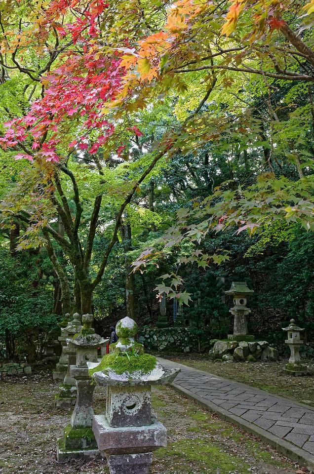 Stone lanterns at the shrine