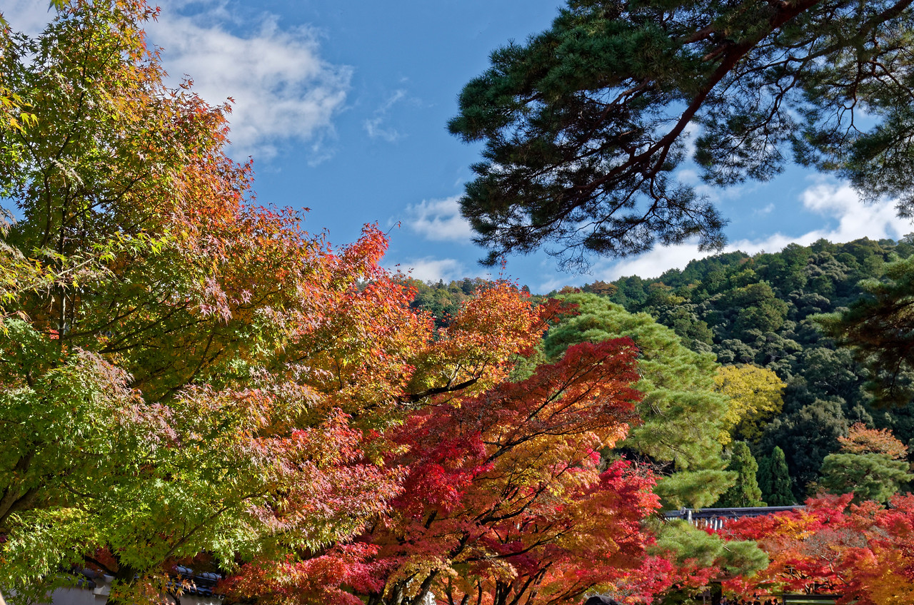 The temple is nestled against the foothills of the Higashiyama mountain range.