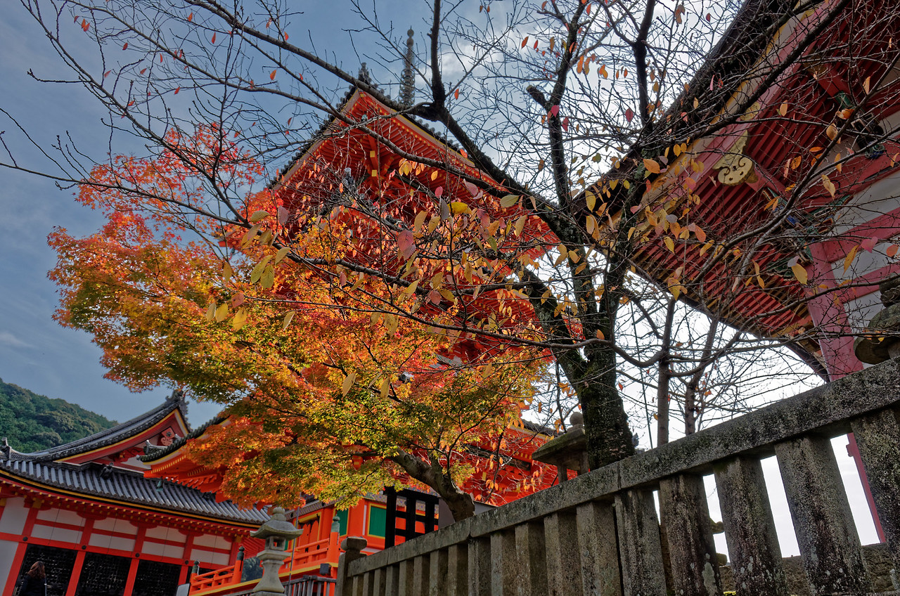 The temple is dedicated to the worship of Kannon, bodhisattva of compassion and mercy.