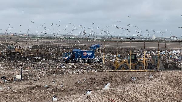 Brownsville Landfill