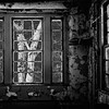 Tree branches through broken windows of abandoned Forest Haven Asylum - a black-and-white infrared image