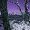 A false-color infrared image of an ESVNWR wetland on Virginia's Eastern Shore