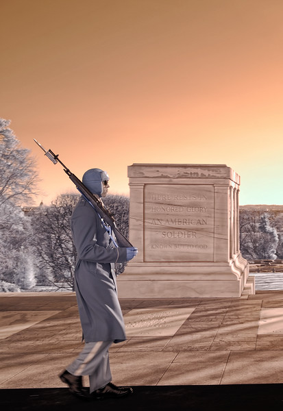 Sentinel of the Tomb of the Unknown Soldier at Arlington National Cemetery - a false-color infrared image