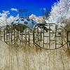 Jungle Gym at abandoned Forest Haven Asylum - a false-color infrared image