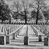 Wide view of headstones at Arlington National Cemetery - a black-and-white infrared image