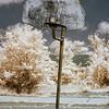 Basketball hoop at abandoned Forest Haven Asylum - a false-color infrared image