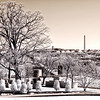 View of Washington DC from the JFK gravesite at Arlington National Cemetery - a false-color infrared image