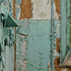 Peeling painted wall of abandoned Forest Haven Asylum - a color image