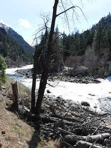 """View of the first rapid, aptly named """"Dam"""".  yeah, it's mostly all white."""
