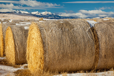 Hay Bales next to the Red Bluff cemetary off Hwy 84.  Red Bluff was first settled in 1864 as a mining town and stage station on the Bozeman Road. During its heyday, it sported two gold mills, various businesses, 12 saloons, a post office, school, and about 500 people. The town thrived until 1890 when the Northern Pacific Railroad made its way to the Alex Norris Ranch some three miles to the west. Soon, the town of Norris was formed and within no time, most people moved there. By 1901, all the businesses, the school and post office were closed. Today, there are just a few scattered remains of the once prosperous community, including the ruins of the old Tanners Hotel on the north side of Highway 84. To the northwest stands the old Red Bluff-Norris Cemetery. South of the highway is a stone structure that was once the school.  The area mines were also located south of the townsite in the Tobacco Root Mountains. Here, many mining remnants can be seen by driving southward on a county road. The old townsite is located about 34 miles west of Bozeman on Highway 84.