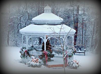 Please Have Snow And Mistletoe