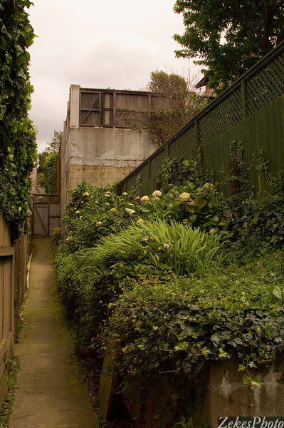 Set back in the harbor district of San Francisco.  The flowered terrace gives way to a tennis court and perhaps a life time of stories as to who has found their way to this path off the street and what has gone on ....