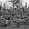 A couple of rainy days roaming Mount Olivet Cemetery 2/14 & 2/18 2017