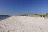 Tybee Island 6158