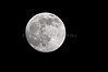 Moon July 2016 3717